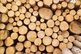 Köpa Timber
