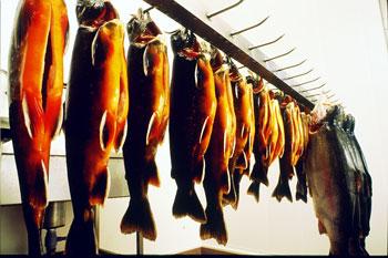 Köpa Rökt fisk