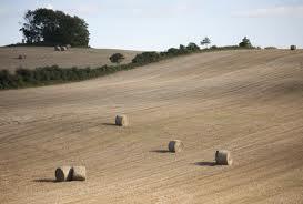 Köpa Lantbruk, jordbruk