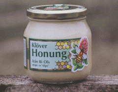Klöver honung