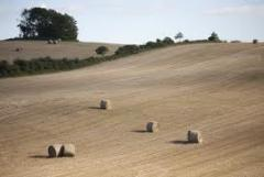 Lantbruk, jordbruk