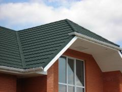 Replacement of roof elements
